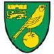 Norwich City Betting Stats