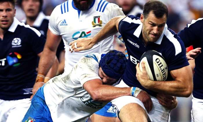 Scotland v Argentina International Rugby Preview